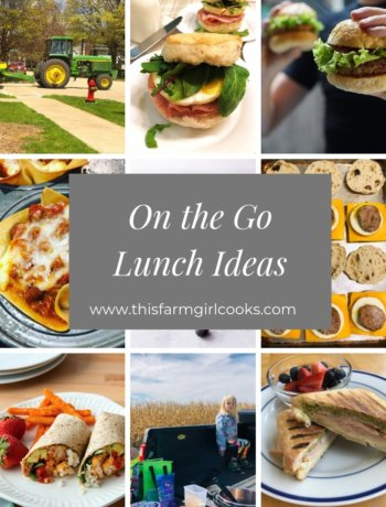 on the go lunch ideas list