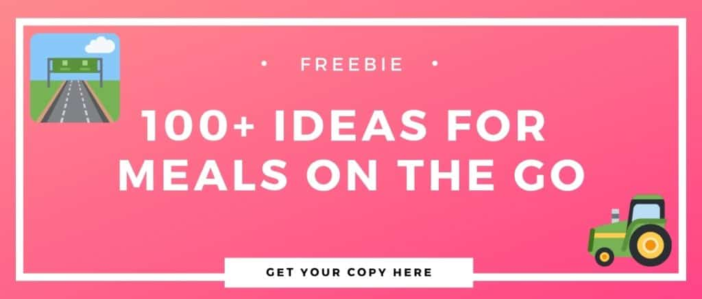100 meal ideas for people on the go