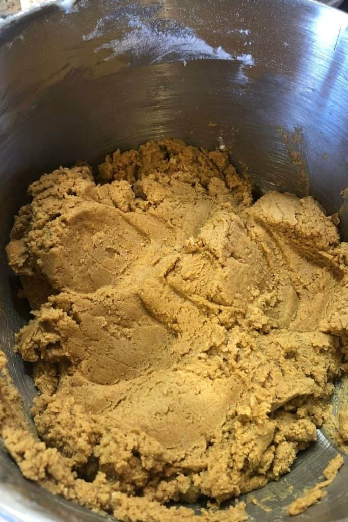 old fashioned gingersnap cookie dough