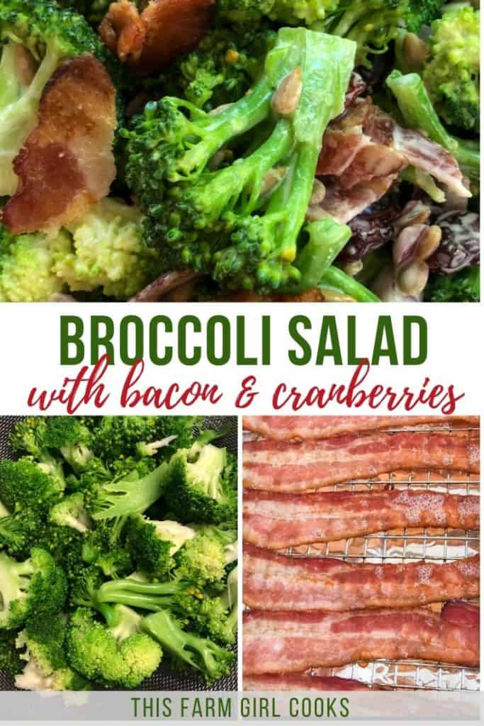 Broccoli Salad with Bacon and Cranberries