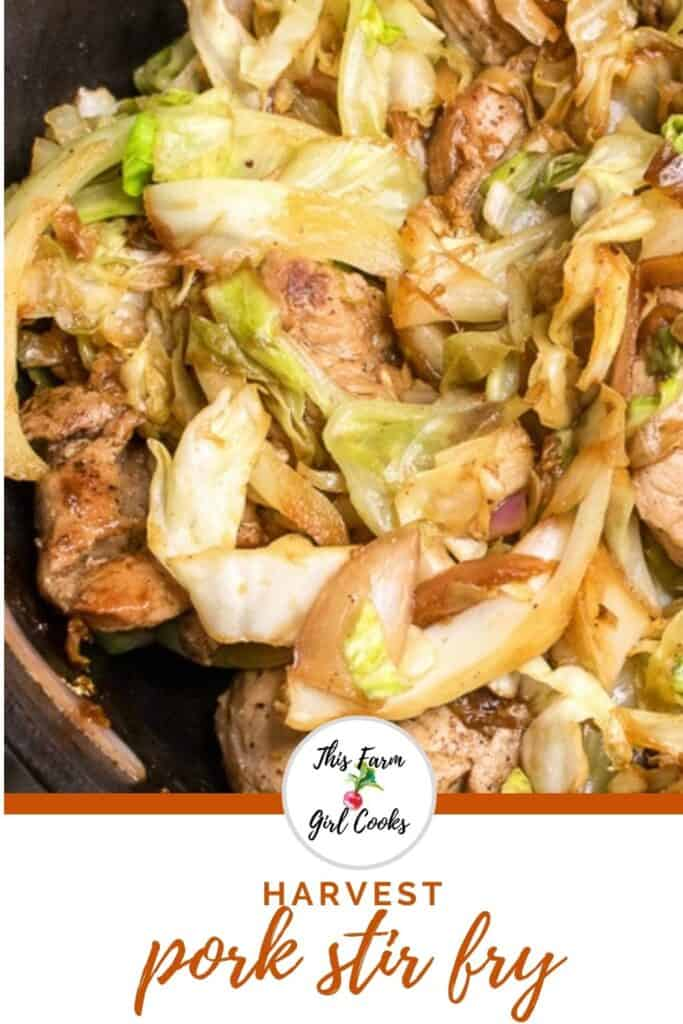pork stir fry with cabbage