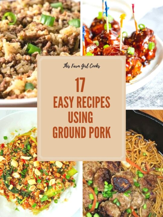 17 Easy Recipes Using Ground Pork