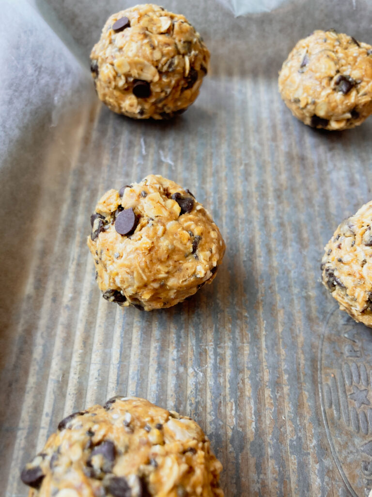 healthy oatmeal bites recipe