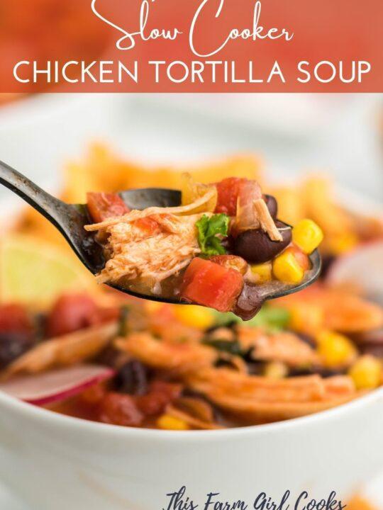 Healthy Chicken Tortilla Soup Pin